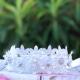 Στεφανάκι βάπτισης Lace and White Roses