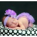 κάλυμμα πάνας Lavender