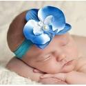 Κορδελα μαλλιων Blue orchid